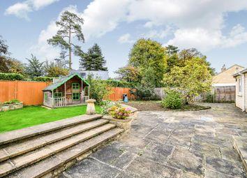 Thumbnail 4 bedroom detached bungalow for sale in Springfield Gardens, Whitley, Melksham
