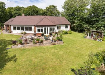 Thumbnail 4 bed detached bungalow for sale in Borders Lane, Etchingham