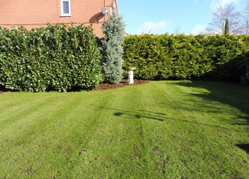 Thumbnail 3 bedroom semi-detached house for sale in Plover Close, Oakham