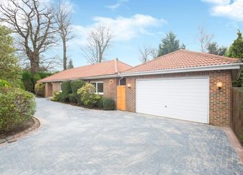 Thumbnail 5 bedroom detached bungalow to rent in Fairacres, Cobham