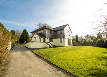 Thumbnail 4 bed detached house for sale in Down Park Drive, Tavistock
