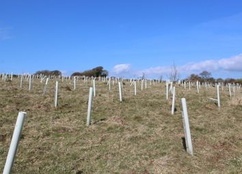 Thumbnail Land for sale in Loddiswell, Kingsbridge