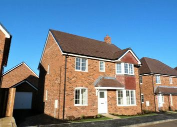 Thumbnail 4 bed detached house to rent in Augusta Park, Andover