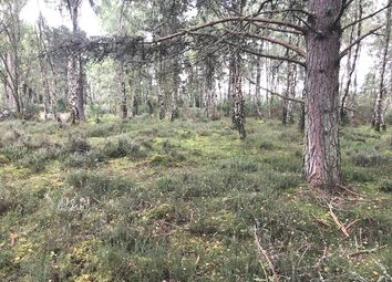Thumbnail Land for sale in Rafford, Forres