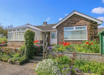 Thumbnail 3 bed bungalow for sale in Mount Pleasant, Binbrook, Lincolnshire
