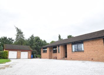 Thumbnail 4 bed detached bungalow for sale in Easter Balcroy, Nairn