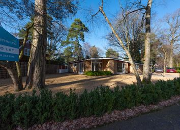 Thumbnail 4 bed detached house to rent in Heathermount Drive, Crowthorne