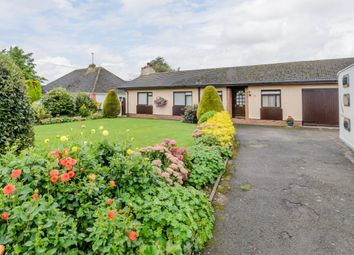 Thumbnail 4 bed bungalow for sale in Inner Loop Road, Chepstow, Gloucestershire