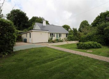Thumbnail 4 bed detached bungalow for sale in Martineau Lane, Hastings, East Sussex