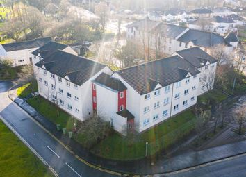 Thumbnail 2 bed flat to rent in Rodger Place, Rutherglen, Glasgow