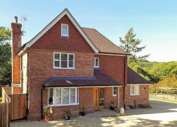 Thumbnail 4 bed detached house for sale in Petersfield Road, Greatham, Liss