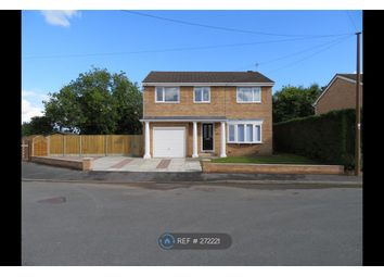 Thumbnail 4 bed detached house to rent in Cae Bychan, Flint