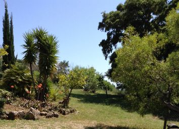 Thumbnail 3 bed finca for sale in Andratx, Port D'andratx, Andratx, Majorca, Balearic Islands, Spain