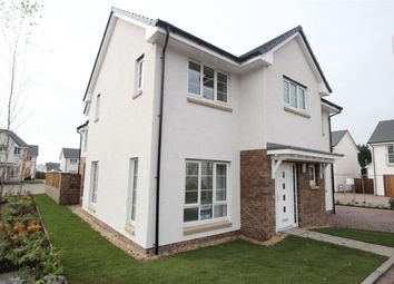 Thumbnail 4 bed detached house to rent in Jocelin Avenue, Bishopbriggs