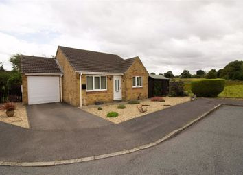Thumbnail 2 bed bungalow for sale in Bain Rise, Ludford