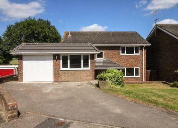 Thumbnail 4 bed property to rent in Maplehurst Road, Chichester