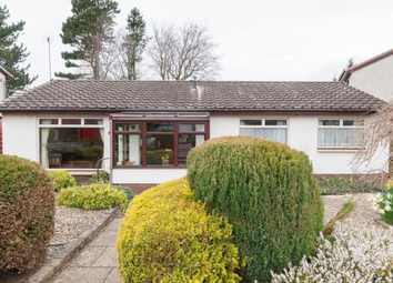 Thumbnail 3 bed detached bungalow to rent in Old Farm Place, Edinburgh EH13,