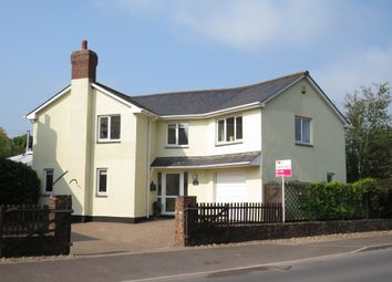 Holford, Bridgwater TA5. 3 bed detached house
