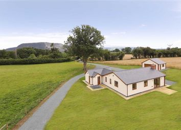 Thumbnail 4 bed detached bungalow for sale in Trederwen Lane, Arddleen, Llanymynech