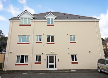 Thumbnail 1 bedroom flat for sale in Park Court, Ilfracombe