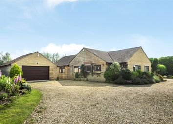 Thumbnail 4 bed bungalow for sale in Chedington Lane, Mosterton, Beaminster, Dorset