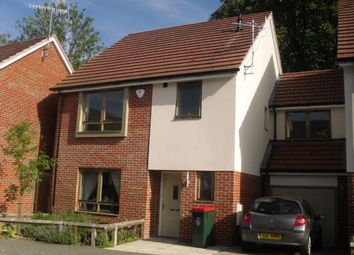 Thumbnail 4 bed detached house to rent in Pinova Close, Ifield, Crawley