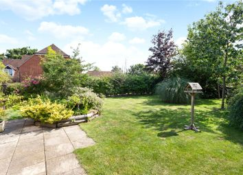 Thumbnail 5 bedroom bungalow for sale in Woolton Hill, Newbury, Berkshire