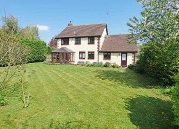 Thumbnail 4 bed detached house for sale in Old Hall Meadow, Rattlesden, Bury St. Edmunds