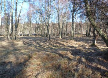 Thumbnail Land for sale in Alvie Estate, Kincraig, Kingussie