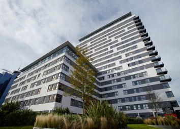 Thumbnail Studio to rent in Skyline Plaza, Basingstoke