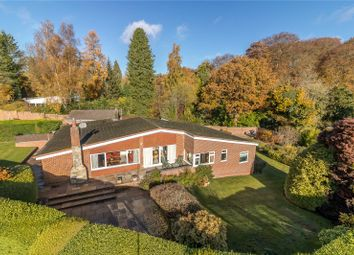 Thumbnail 4 bed bungalow for sale in Tangley, Andover, Hampshire