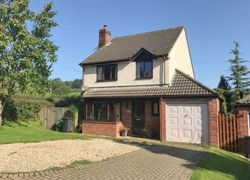 Thumbnail 4 bed detached house for sale in Drakes Meadow, Yarcombe, Honiton