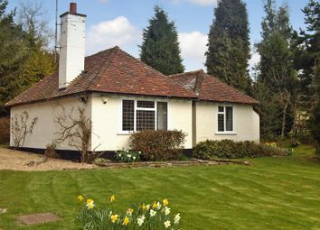 Thumbnail 2 bed detached bungalow to rent in Grants Lane, Oxted