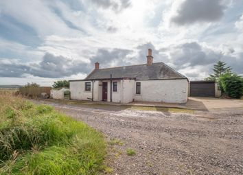 Thumbnail 2 bedroom bungalow to rent in Montrose