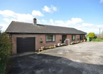 Thumbnail 3 bed detached bungalow for sale in Salkeld Road, Penrith, Cumbria