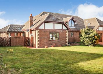 Thumbnail 6 bed detached house for sale in Front Street, Burnhope, Durham
