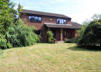 Thumbnail 4 bed detached house for sale in Woodrow Lane, Great Moulton, Norwich