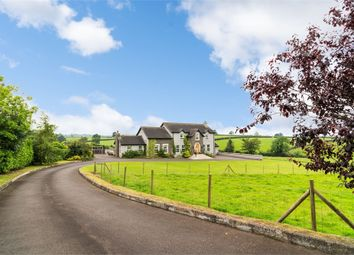 Thumbnail 4 bed detached house for sale in Laurelhill Road, Dromore, County Armagh