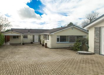 Thumbnail 3 bed detached bungalow for sale in Grenofen, Tavistock
