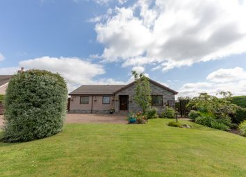 Thumbnail 3 bed detached bungalow for sale in Allanton, Duns
