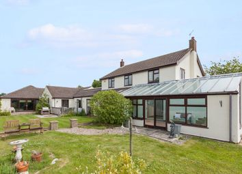Thumbnail 4 bed detached house for sale in Bygone, Main Road, Fleggburgh, Great Yarmouth