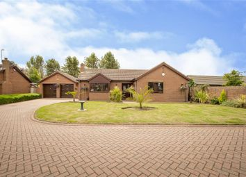Thumbnail 3 bed detached bungalow for sale in Lindley Court, Finningley, Doncaster
