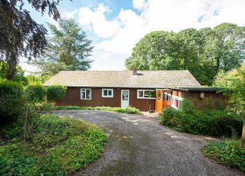 Thumbnail Detached bungalow for sale in Stoke Lacy, Bromyard