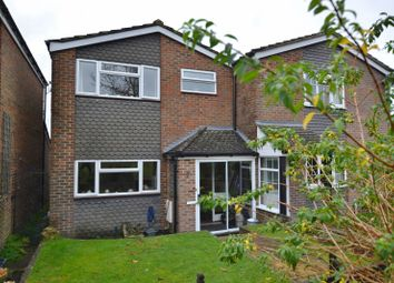 Thumbnail 3 bed semi-detached house to rent in Rosemary Close, Petworth