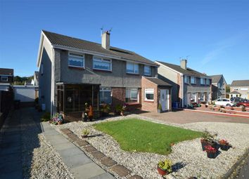 Thumbnail 3 bed semi-detached house for sale in Gordon Terrace, Blantyre, Glasgow