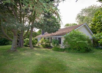 Thumbnail 4 bed detached bungalow for sale in Bowsden, Berwick-Upon-Tweed