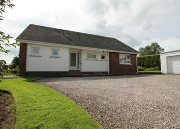 Thumbnail 3 bed detached bungalow to rent in Riseholm, Stainton, Penrith, Cumbria