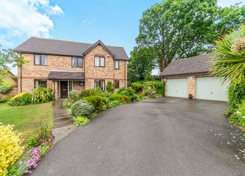 Thumbnail 5 bedroom detached house for sale in Coppice End, Highwoods, Colchester