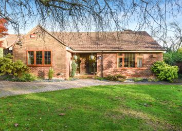 Thumbnail 3 bedroom bungalow for sale in Copse Close, Otterbourne, Winchester, Hampshire