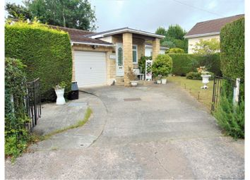 Thumbnail 3 bed detached bungalow for sale in Shiphay Lane, Torquay
